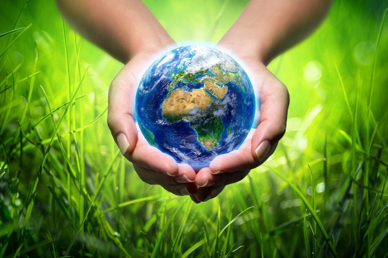 earth in hands - grass background - environment concept - Europe